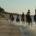konno brzegiem morza